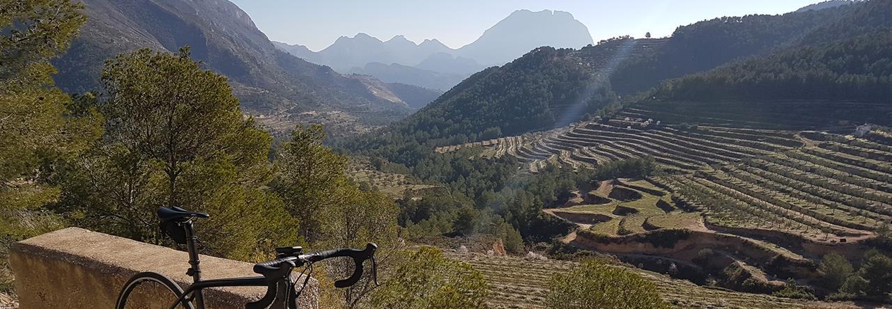 Vista del Puig Campana al fondo.